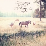 bill-callahan-cover